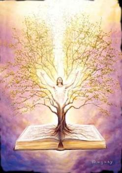arbre-sacre Duguay