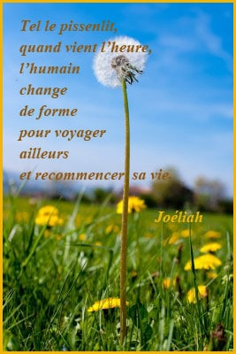Ne Pleure Pas Si Tu Maimes Poême De Saint Augustin Le